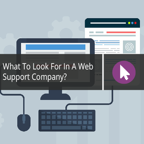 What To Look For In A Web Support Company?