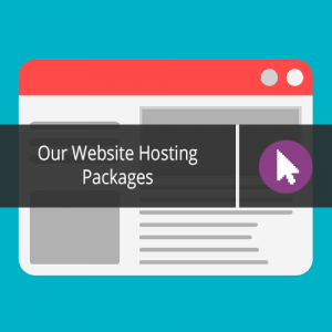 Our Website Hosting Packages
