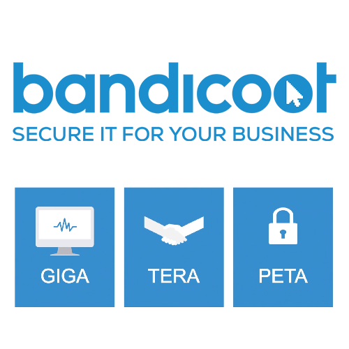 New IT Support Packages From Bandicoot